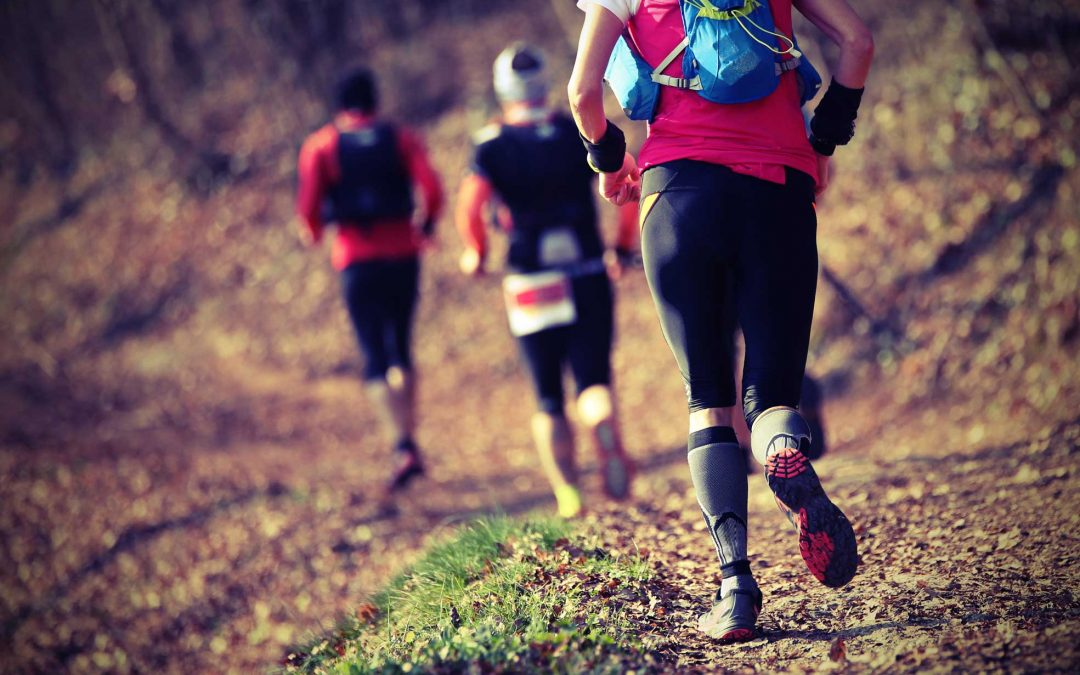Cross-country running and Circuits for training in the winter