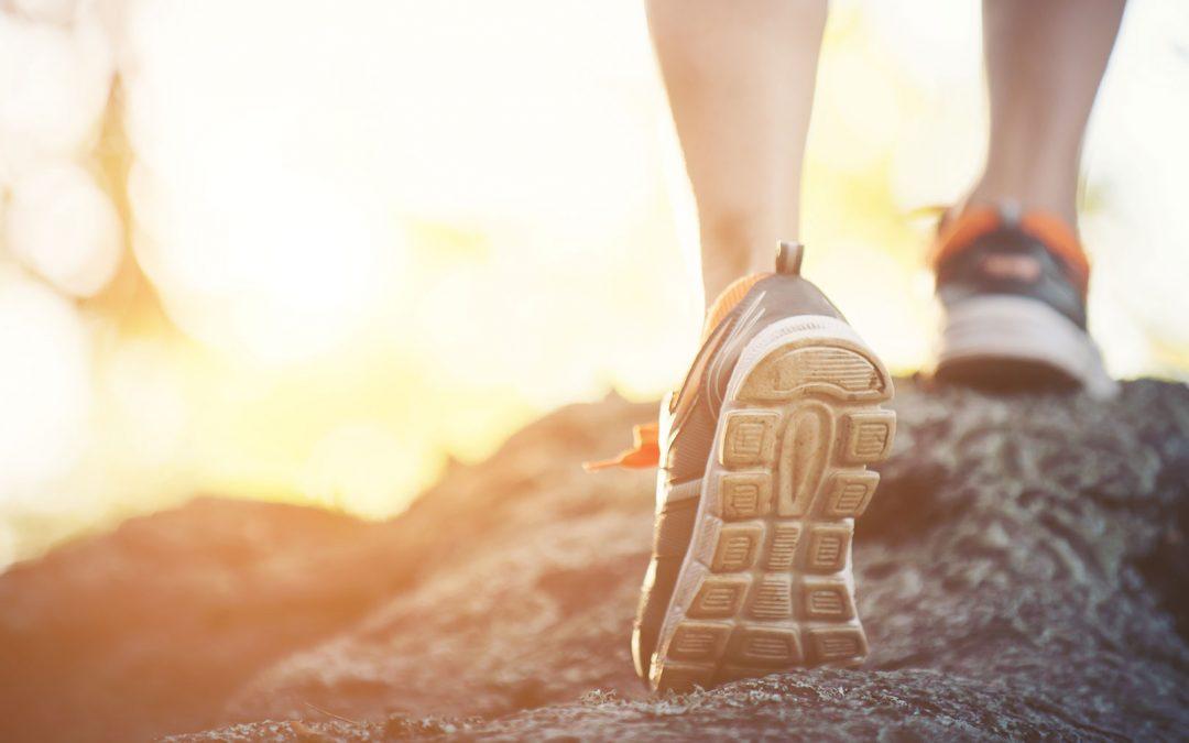 Scarpa Trail, orientarsi sulla buona scelta
